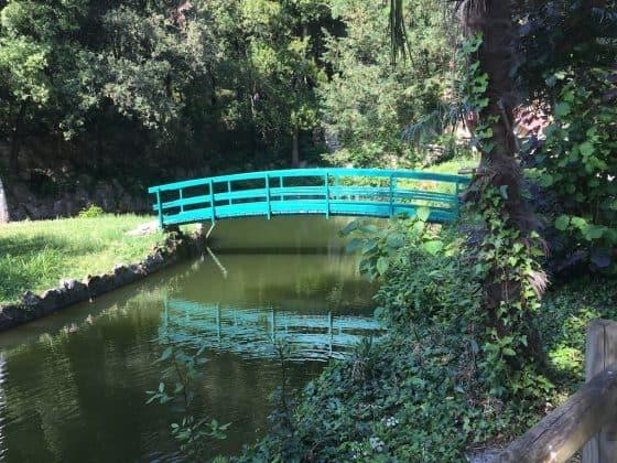Lago anatre nel parco del castello di Miramare