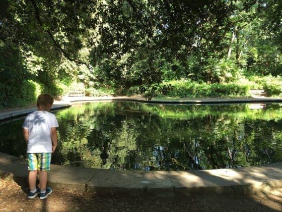 Laghetto nel parco del castello di Miramare