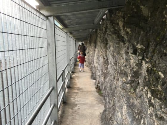 ingresso conta guida alla diga