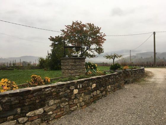 Giardino esterno dell'agriturismo Borgo dei Sapori