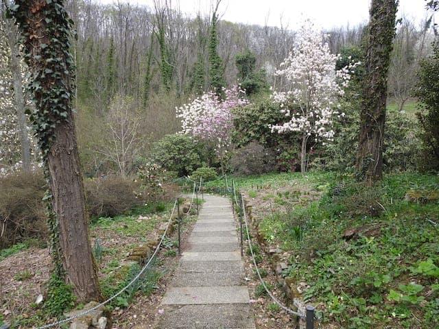 Giardino Lucio Viatori Primavera 2017 -2