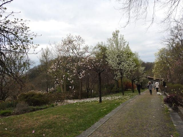 Giardino Lucio Viatori Primavera 2017 - 30