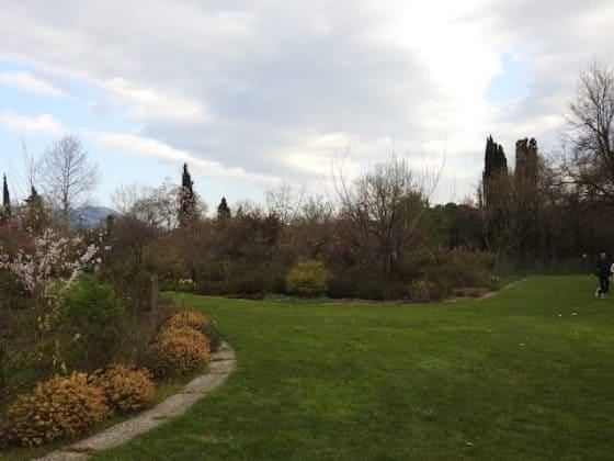 Giardino Lucio Viatori Primavera 2017 - 38