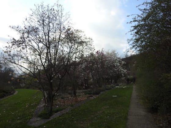 Giardino Lucio Viatori Primavera 2017 - 50