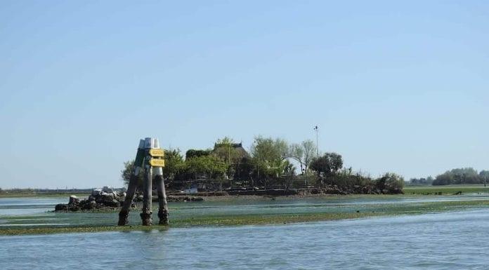 escursione nella Laguna di Grado