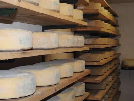 Conservazione dei formaggi