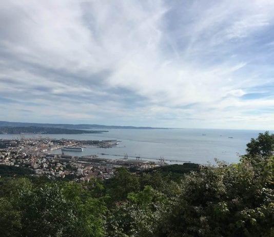 caffè storici di Trieste