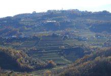 brda slovenia