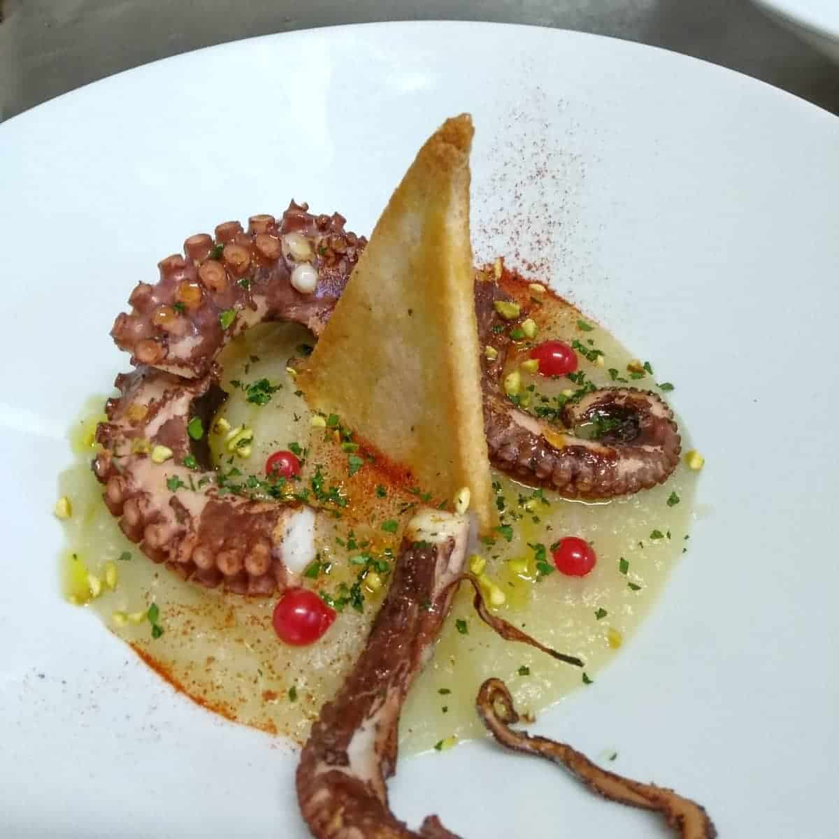 Octopus Ancient Aquileia