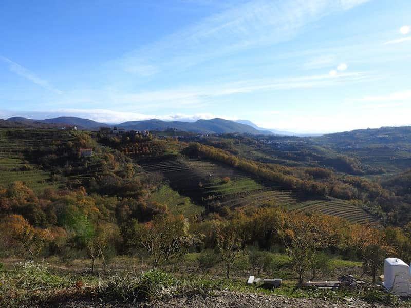 Collio sloveno