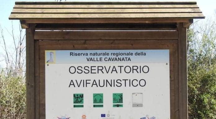 Riserva naturale della Valle Cavanata