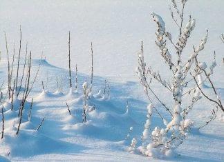 Come si forma la neve
